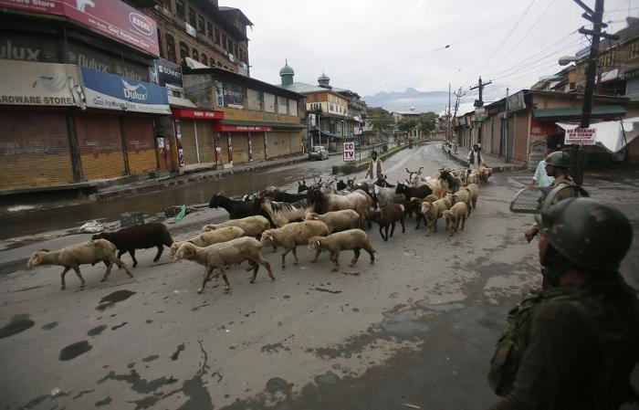Telepon Darat di Kashmir Dipulihkan, Internet Masih Mati