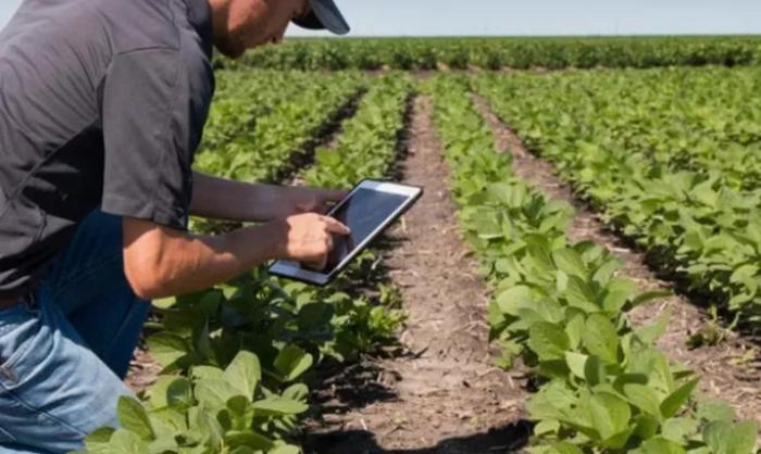 Ransomware Targetkan Pertanian, FBI Ingatkan Dapat Ganggu Rantai Pasokan Makanan