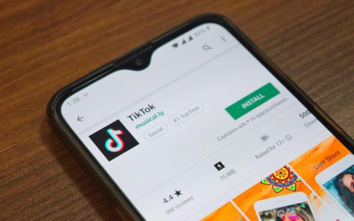 Ancam Keamanan Negara, India Blokir TikTok dan WeChat