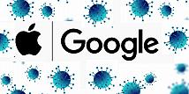 Apple dan Google Rilis API untuk Aplikasi Deteksi Covid-19